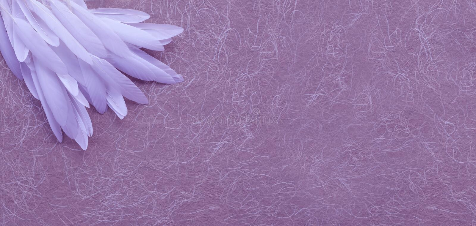 Angelic White Feather Corner Dusky Pink Background. A random pile of long thin white feathers placed in the top left corner against a rustic swirly handmade pink royalty free stock photography