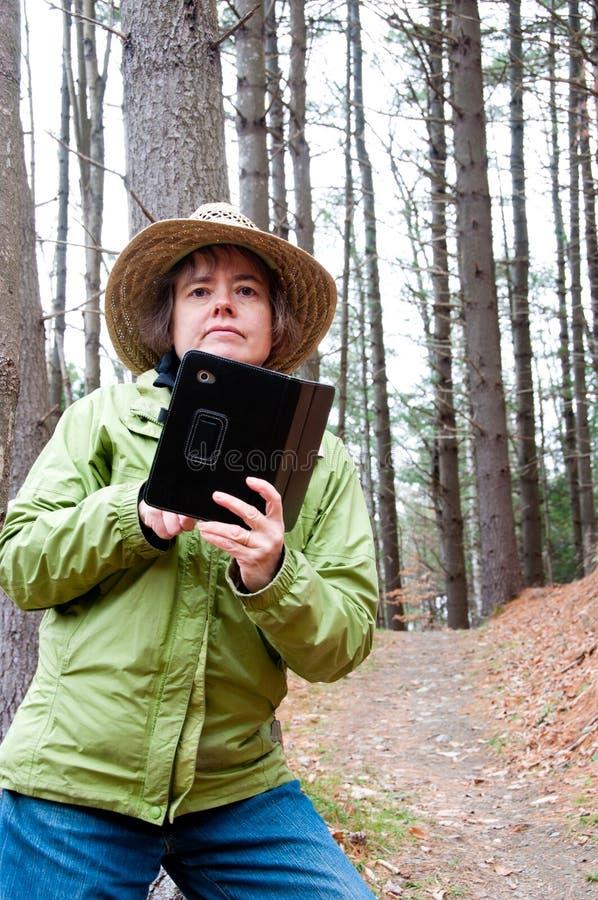 Randonneur à l'aide de l'ordinateur de comprimé dans les bois image libre de droits