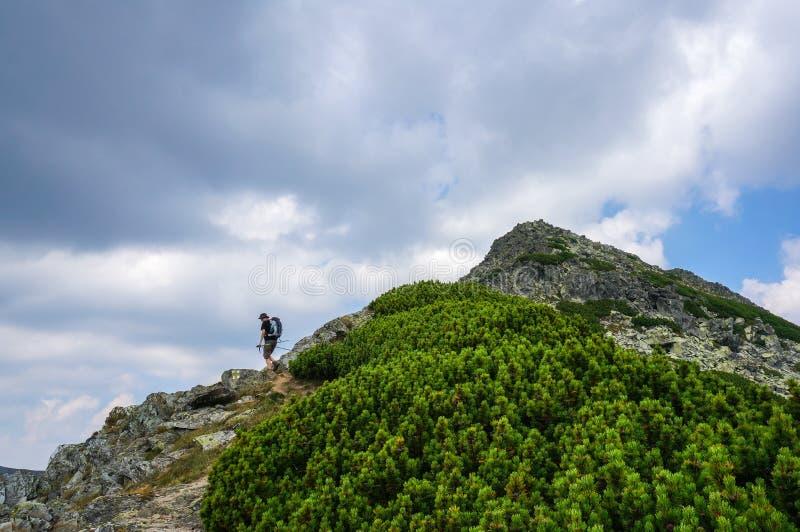Randonneur avec le sac à dos s'élevant sur la montagne sur un chemin de touristes image libre de droits
