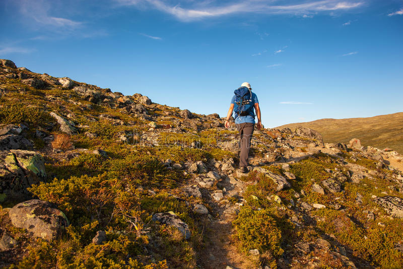 Randonneur avec le sac à dos voyageant en montagnes Dovre de la Norvège image libre de droits