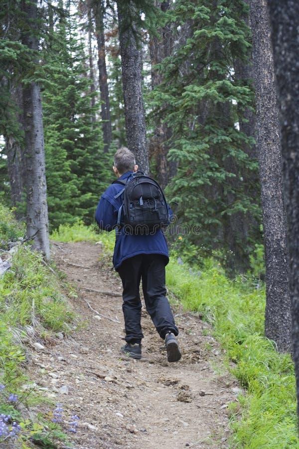 Randonneur avec un daypack photographie stock libre de droits