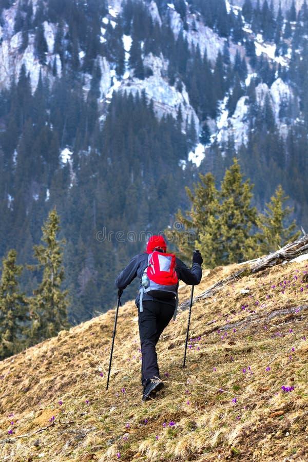 Randonneur dans les montagnes images stock