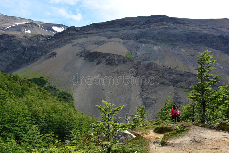 Download Randonneur De Femme En Parc National De Torres Del Paine, Chili Photo stock éditorial - Image du course, patagonia: 87702378