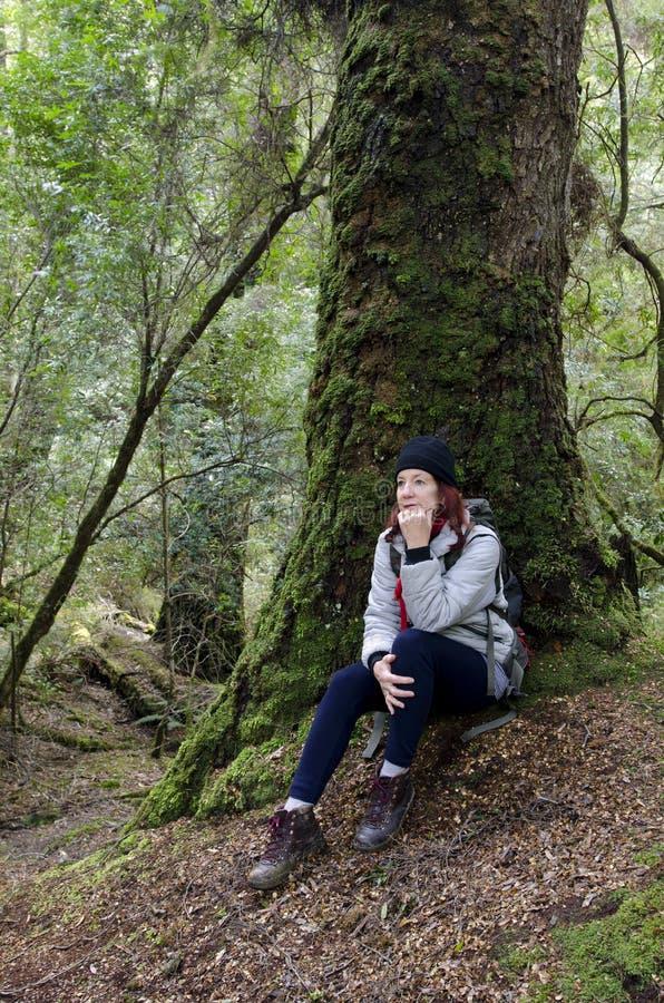 Randonneur féminin dans la région sauvage tasmanienne photos libres de droits