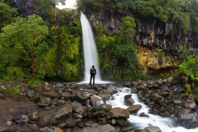 Randonneur heureux d'homme appréciant stupéfiant la cascade tropicale au Nouvelle-Zélande Mode de vie de voyage et concept de suc photo libre de droits