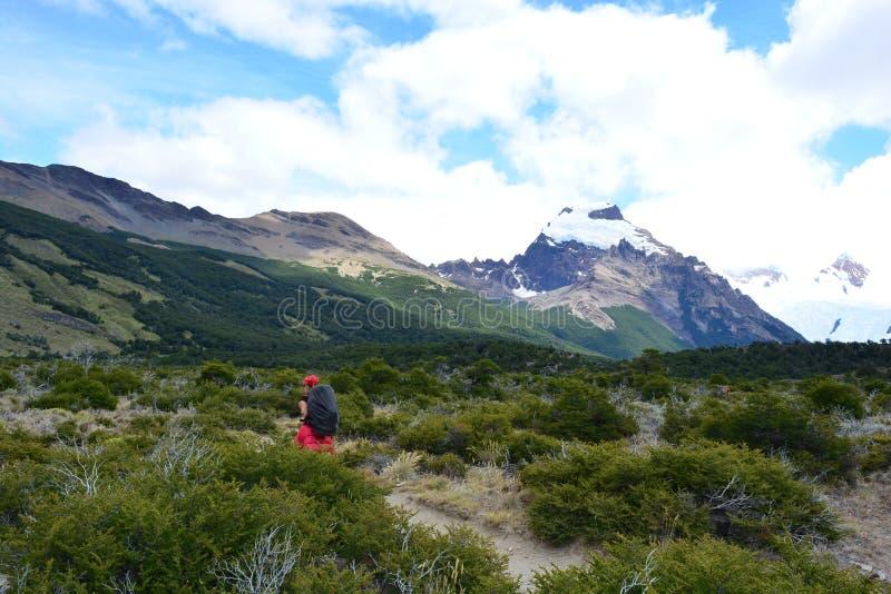 Download Randonneur Non Identifié De Femme à L'intérieur Du Parc National De Visibilité Directe Glaciares, EL Chaltén, Argentine Photographie éditorial - Image du trekking, fitzroy: 87704667
