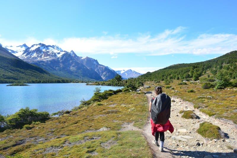 Download Randonneur Non Identifié De Femme à L'intérieur Du Parc National De Visibilité Directe Glaciares, EL Chaltén, Argentine Image stock - Image du falaise, fitzroy: 87705013