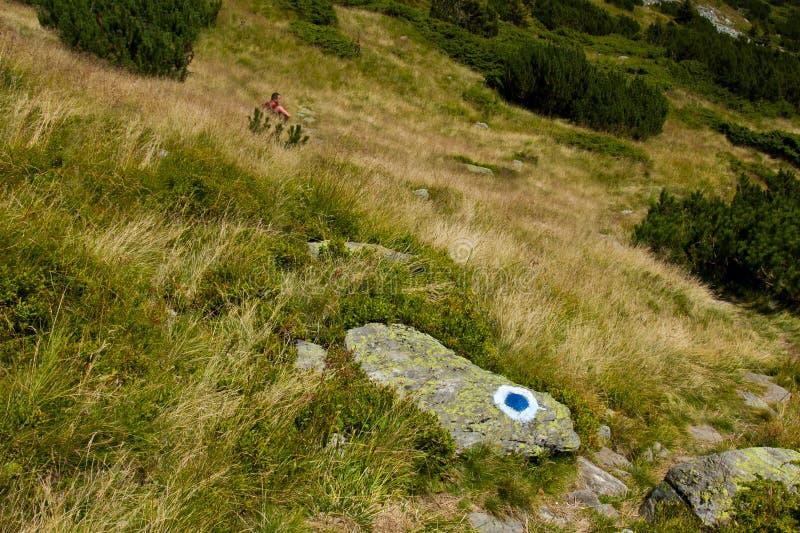 Randonneur se reposant dans l'herbe image libre de droits