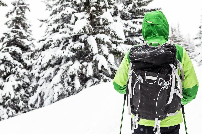 Randonneur sur la hausse d'hiver en bois neigeux blancs photographie stock libre de droits