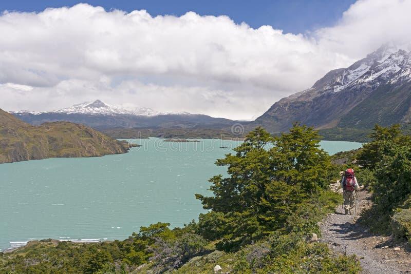 Randonneur sur une traînée à distance dans les Andes Patagonian photo libre de droits