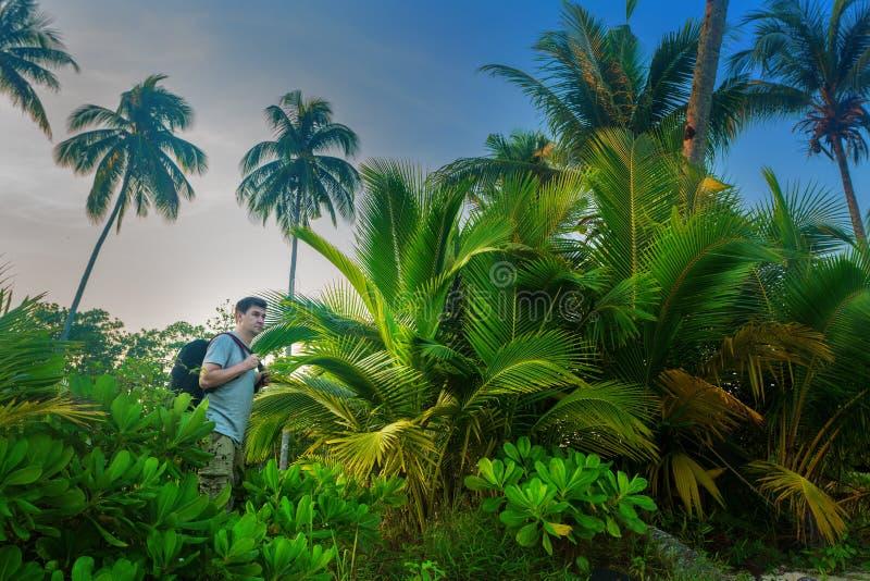 Randonneurs dans la jungle photos libres de droits