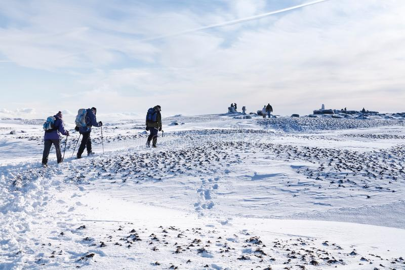 Randonneurs en hiver images libres de droits