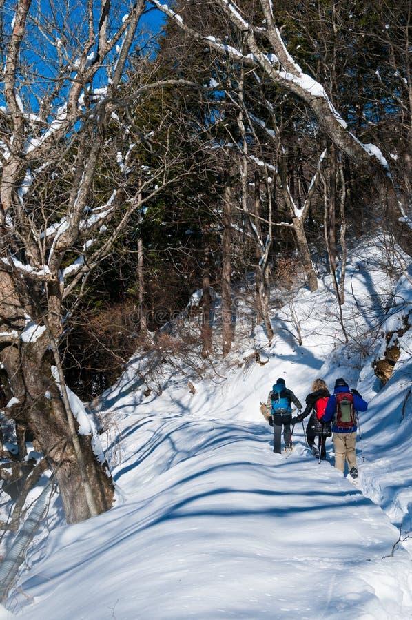 Randonneurs en hiver sur le chemin de Nakasendo, Japon photos libres de droits