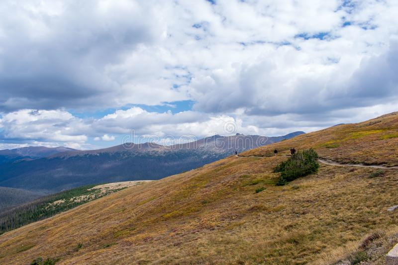 Randonneurs marchant le long de la traînée en Rocky Mountain National Park image libre de droits