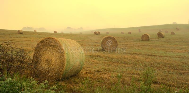 Ranek łuna: Wschód słońca nad siano polami fotografia royalty free
