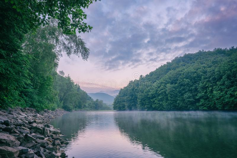 Ranek cisza, mistyczny mgłowy lato krajobraz, halna rzeka otaczająca zielonym lasem z odbiciem w wodzie obrazy royalty free