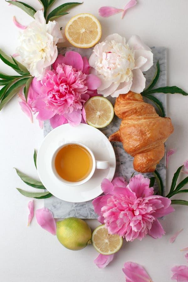 Ranek filiżanka herbaciana, świeża piękna peonia i kwitnie na białym tle Odg?rny widok Płaski układ, pojęcie kobieta zdjęcia royalty free