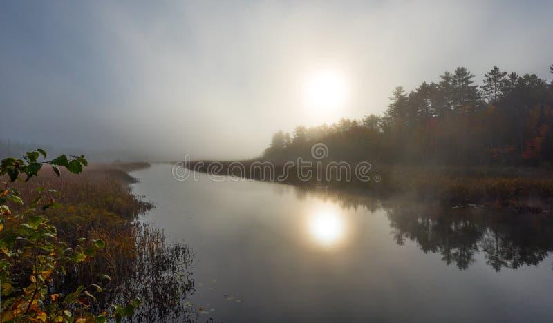 Ranek mgły wzrosty z ciepłej wody w chłodno powietrze na Corry jeziorze, Ontario, Kanada obraz royalty free