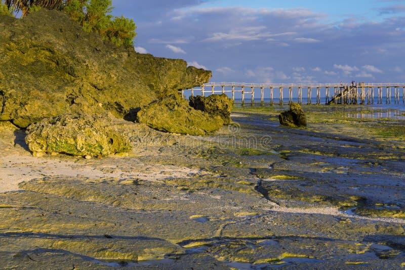 Ranek na oceanu wybrzeża Zanzibar wyspie zdjęcia stock