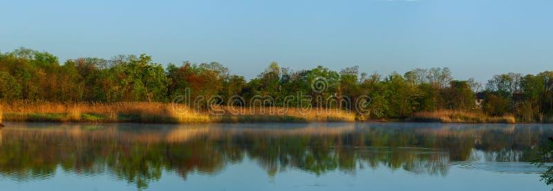 Ranek na rzecznych wczesny poranek płochach zaparowywa mgły i wody powierzchnię na rzeczny Mistyczny mgłowym fotografia stock