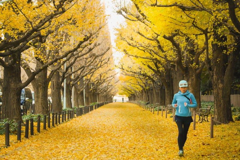 Ranek przy Tokio Japonia Piątek, Dec 2, 2016 Tokio mieszkanowie jogging przy Ginkgo aleją W Opóźnionej jesieni, kolor zmiana Przó obraz royalty free