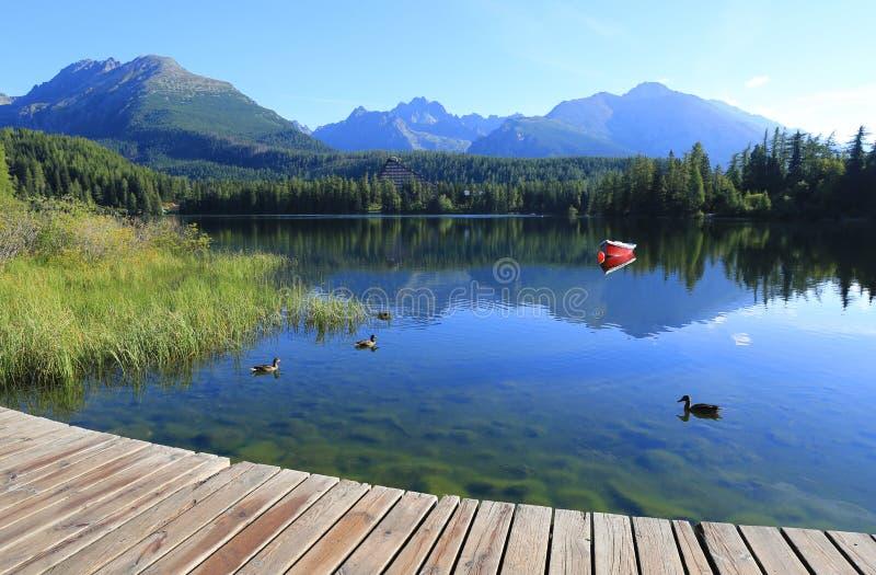 Ranek scena na halnym jeziorze zdjęcia stock