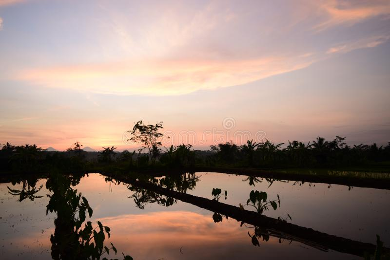 Ranek sceneria w wsi obrazy royalty free