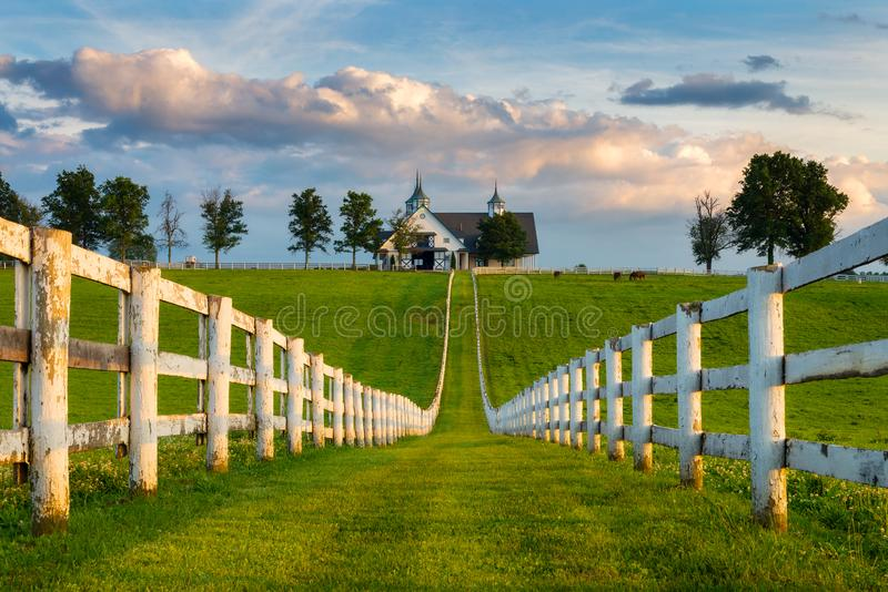 Rangée blanche de barrière et grange, backroads du Kentucky image stock