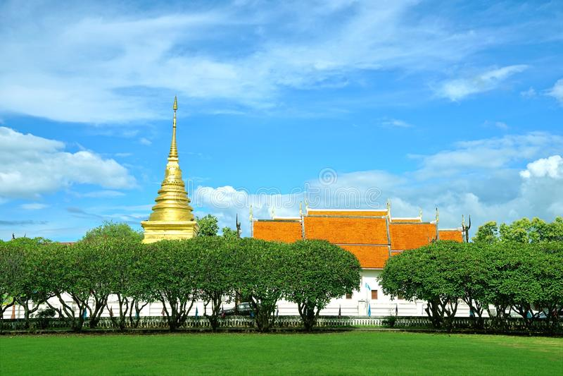 Rangée d'arbre rose de Frangipani ou de Plumeria avec la pagoda d'or images stock