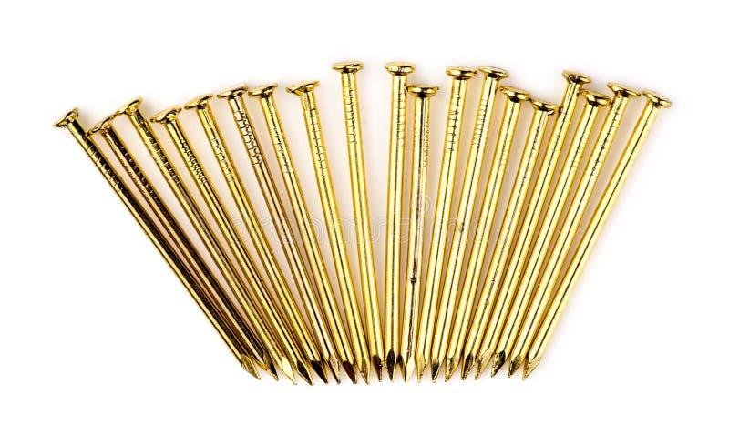 Rangée de nouveaux clous en laiton d'or d'isolement sur le blanc photographie stock