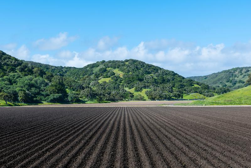 Rangées de la terre nue noire riche fraîchement labourée dans la perspective à de belles collines couvertes de chêne vertes image stock