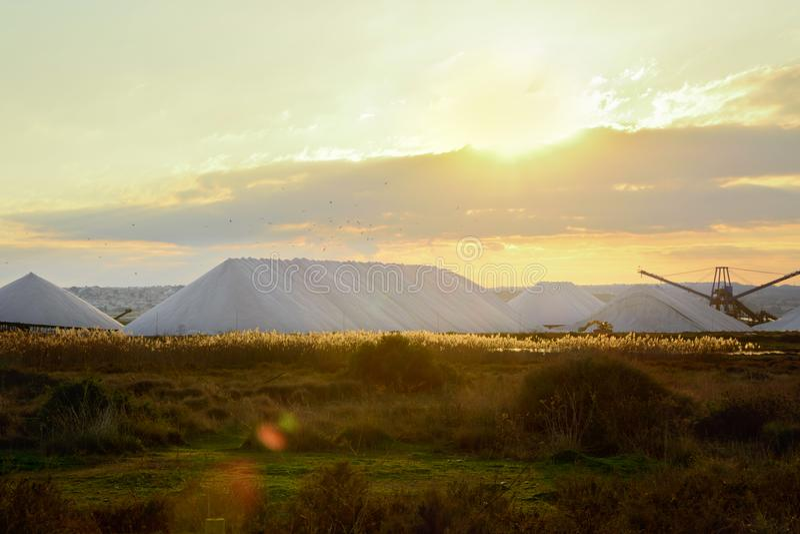 Rangées des dépôts de piles de sel de forme de pyramide dans Alicante Torrevieja Espagne dans les rayons d'or de lumière du solei photos libres de droits
