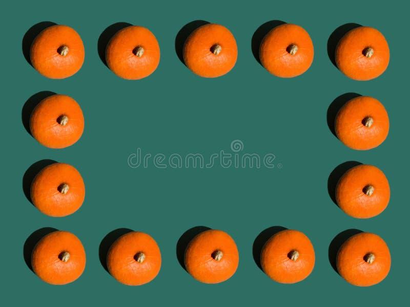 Rangées géométriques de fond de Halloween des potirons oranges lumineux disposés en frontière de cadre sur vert-foncé style d'art photo libre de droits