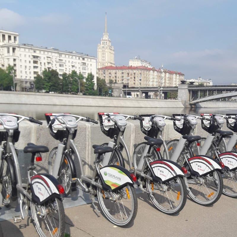 Rang?e des bicyclettes pour la location photo stock