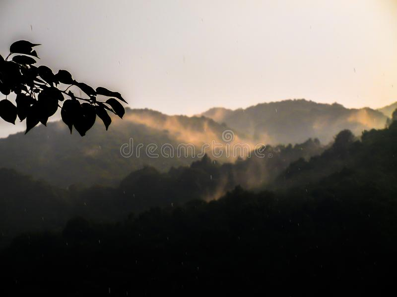 Range of beautiful hill forest. Of subtropical and temperate range, with rising clouds, mist in the sky, stricken by the sunlight stock photo