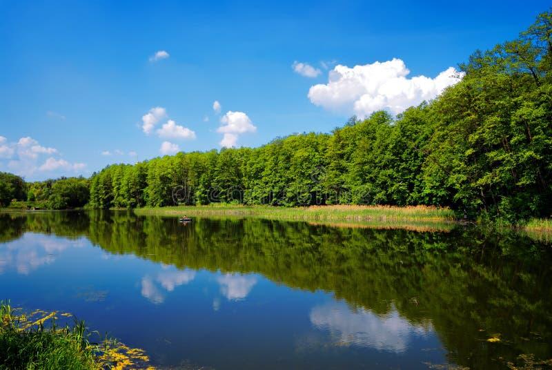 Download Range Of Trees On Sky Background Stock Image - Image: 19648493