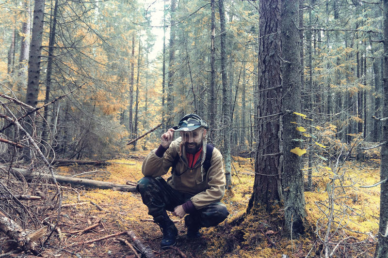 Ranger in autumn forest. Ranger in autumn pine forest stock photos