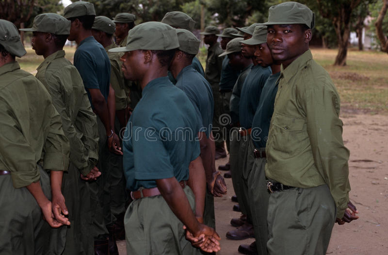 Download Rangers During A Drill In The Gorongosa National Park Editorial Stock Image - Image: 25576079