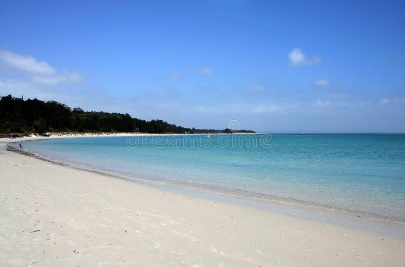 Download Rangiputa Beach, Northland, New Zealand Stock Photo - Image: 7461054