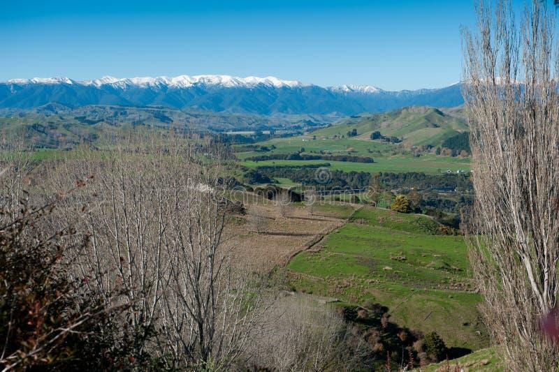 Rangitikei dolina zdjęcie stock