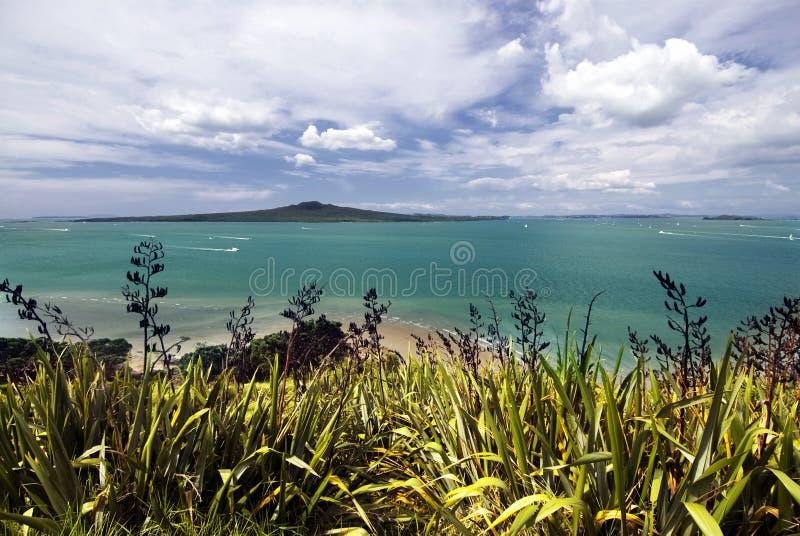Rangitotoeiland, Waitemata-Haven, de Stad van Auckland, Nieuw Zeeland stock foto's