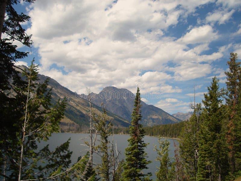 Rango de Teton y lago jenny fotos de archivo libres de regalías