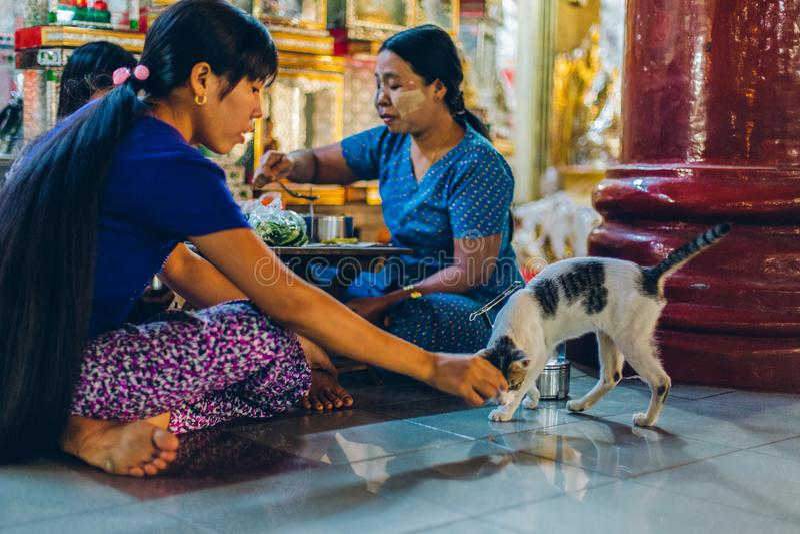 Rangoon, Myanmar - 19 febbraio 2014: Famiglia birmana che mangia con il gatto fotografia stock