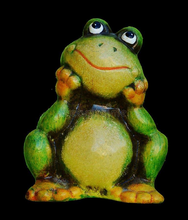 Ranidae, Frog, Tree Frog, Amphibian royalty free stock image