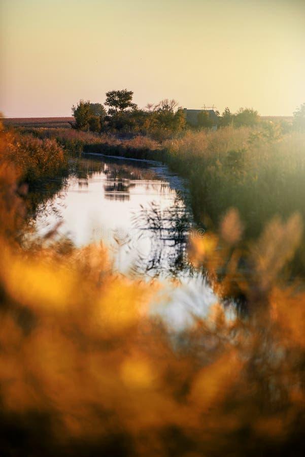 Ranking pól rolniczych w Sunset obrazy stock