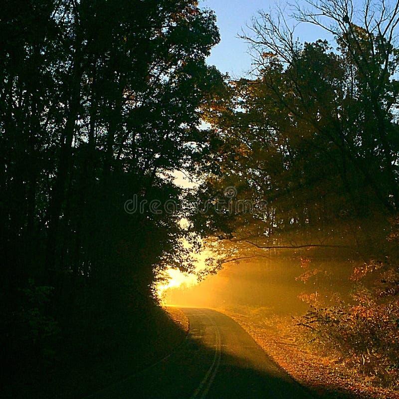 Ranku światła słonecznego widoki obrazy stock