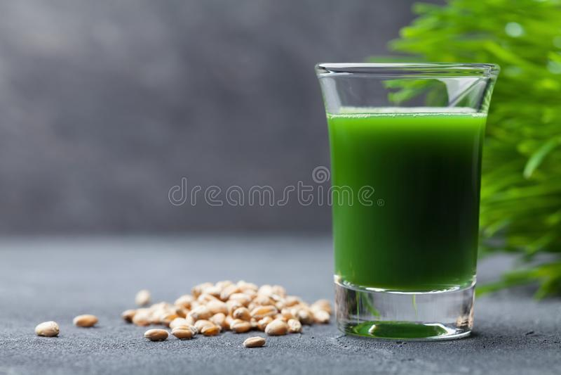 Ranku napój od pszenicznego trawa soku Zdrowy Superfood Detox pojęcie obrazy royalty free