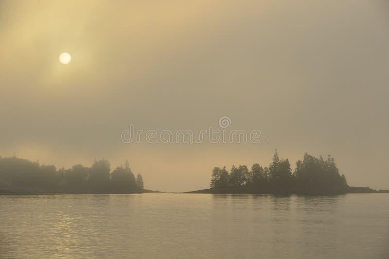 Ranku słońca palenie przez nabrzeżnej mgły obrazy royalty free