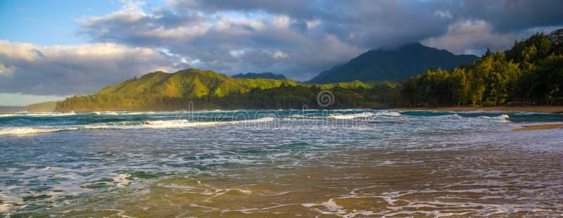 Ranku seafoam, wainiha plaża fotografia stock