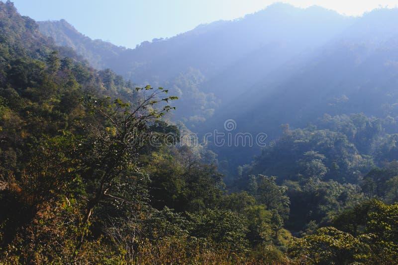 Ranku widok Himalajskie góry, Rishikesh zdjęcie royalty free